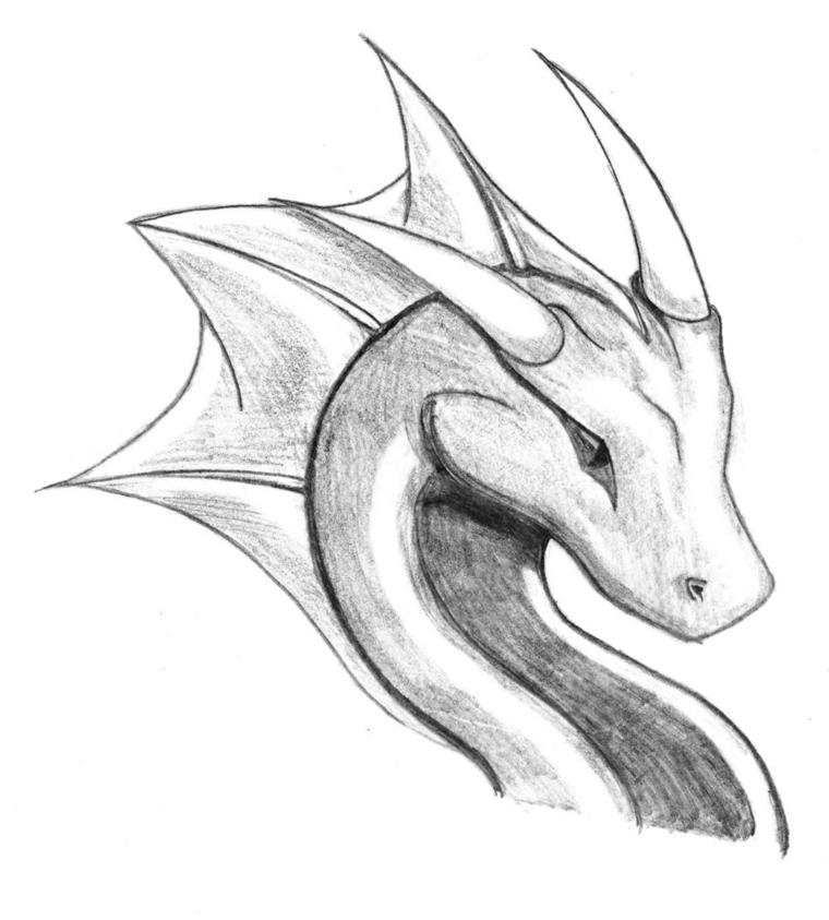 Immagini belle da disegnare, disegno di un drago, abbozzo a matita