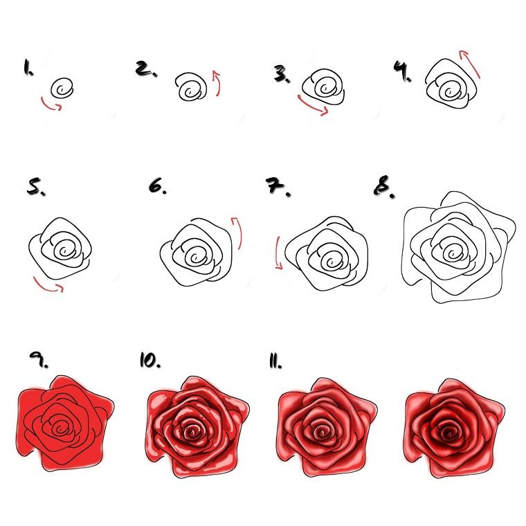 Rose stilizzate, tutorial passaggi disegno, rosa di colore rosso