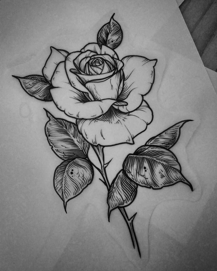 Schizzo su carta trasparente, disegno di una rosa, come fare i petali