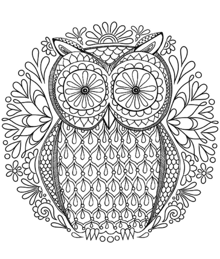 Mandala da colorare, disegno di un gufo, rappresentazione da colorare