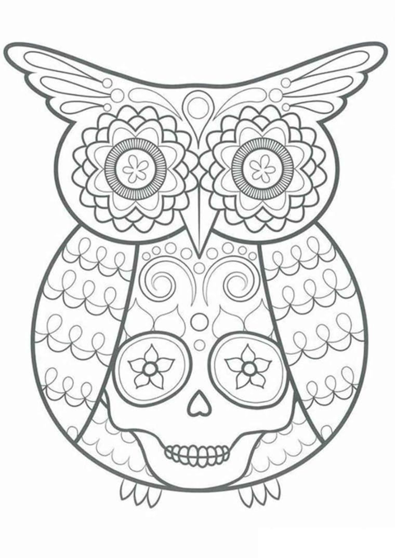 Disegno di un gufo, sugar skull, disegni difficili da colorare