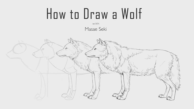 Disegni a matita facili, come disegnare un lupo
