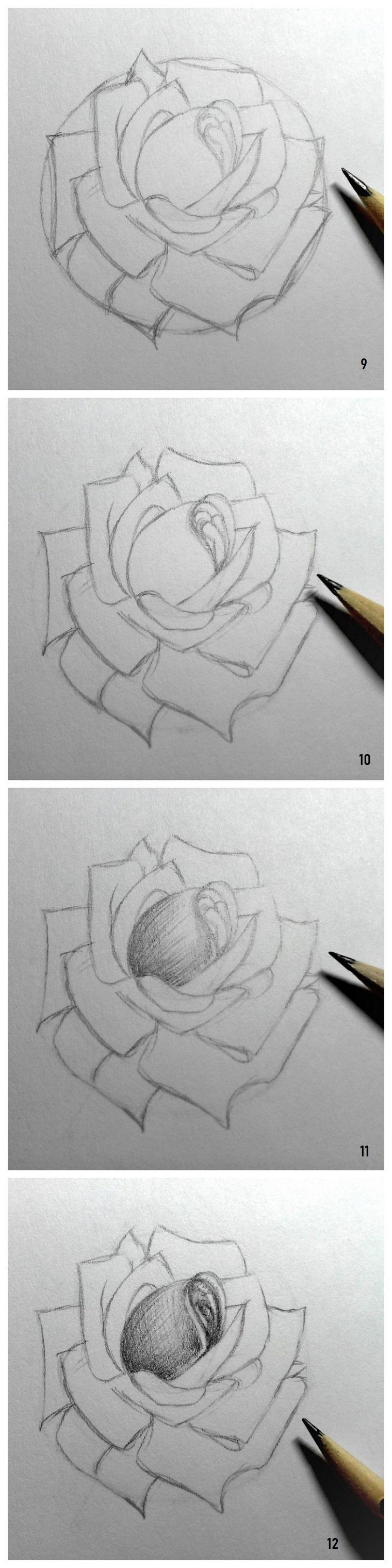 Disegni da copiare facili e belli, disegno di una rosa, disegnare con matita