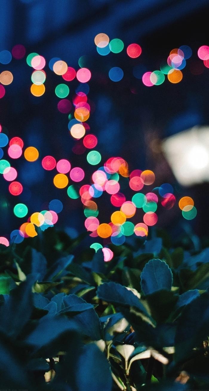Sfondi tumblr, immagine con lucine, foglie verdi di una pianta