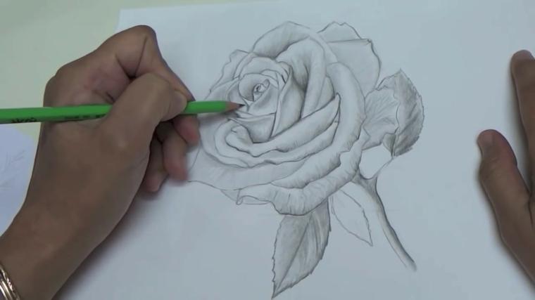 Disegno rosa stilizzata, disegno a matita, ombreggiatura con matita