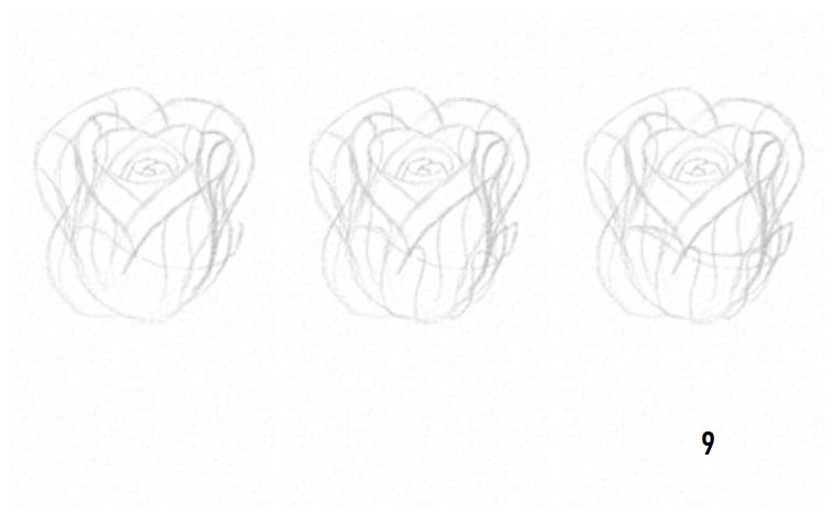 Disegni tumblr facili, abbozzi di petali di rosa, disegno a matita