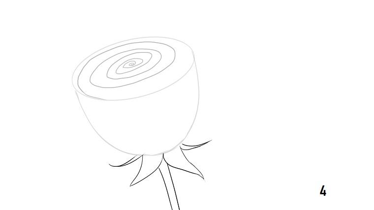 Disegni facili da disegnare a mano libera, cerchio a spirale, abbozzo di una rosa
