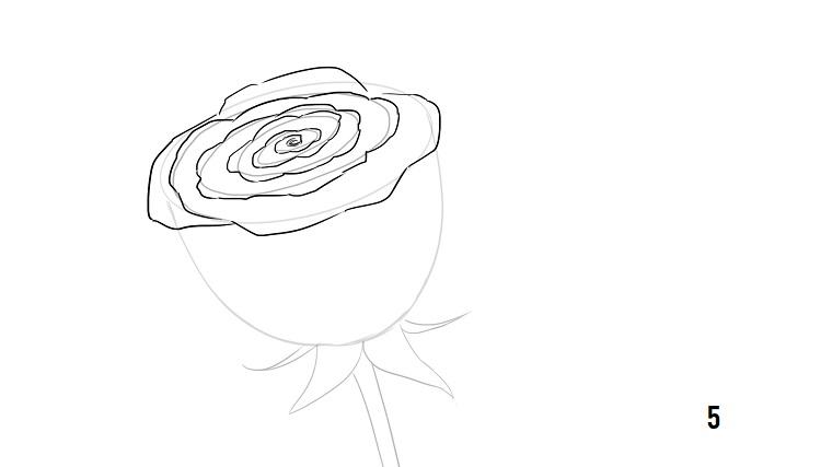 Disegni tumblr facili, schizzo di una rosa, disegno a matita su foglio bianco