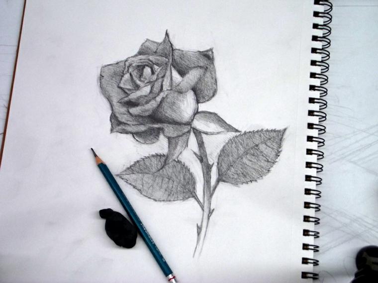 Disegno con matita, schizzo di una rosa, quaderno ad anelli