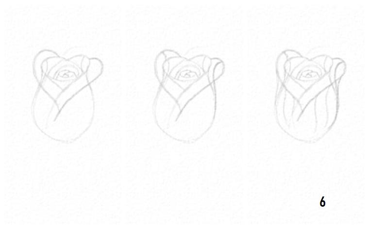 Fiori facili da disegnare, disegno di una rosa, abbozzo a matita
