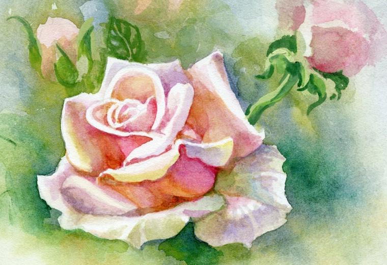 Come disegnare una rosa, disegno dipinto con acquarelli, petali di colore rosa