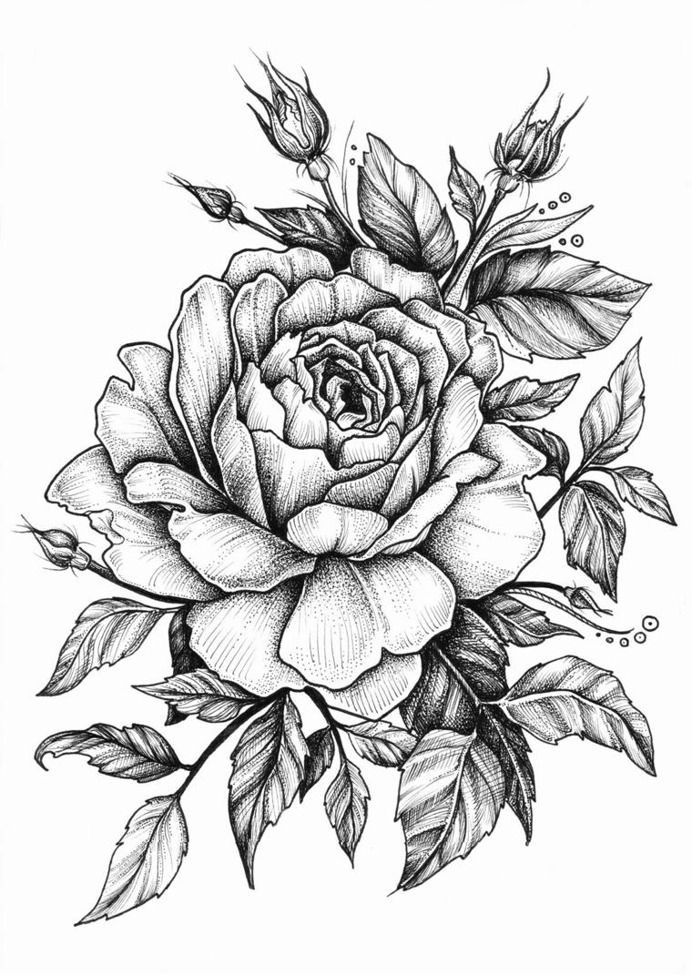 Disegni di fiori a matita, sfumature sulle foglie
