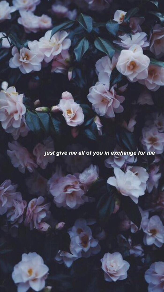 Effetti foto stile tumblr, fotografia di fiori, foto con scritta