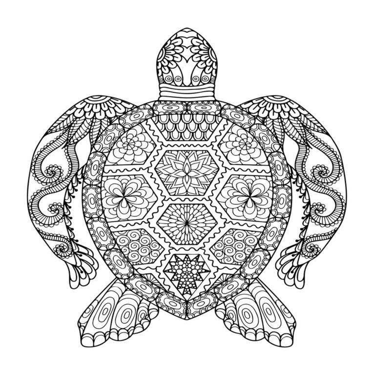Mandala da colorare, disegno di una tartaruga, disegno con ornamenti