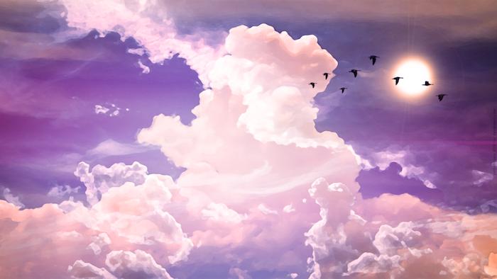 Immagini tumblr sfondi, cielo con nuvole, uccelli che volano
