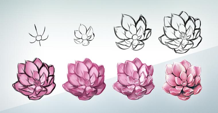 Fiori facili da disegnare, fiore di loto, passaggi per fare un abbozzo di fiore