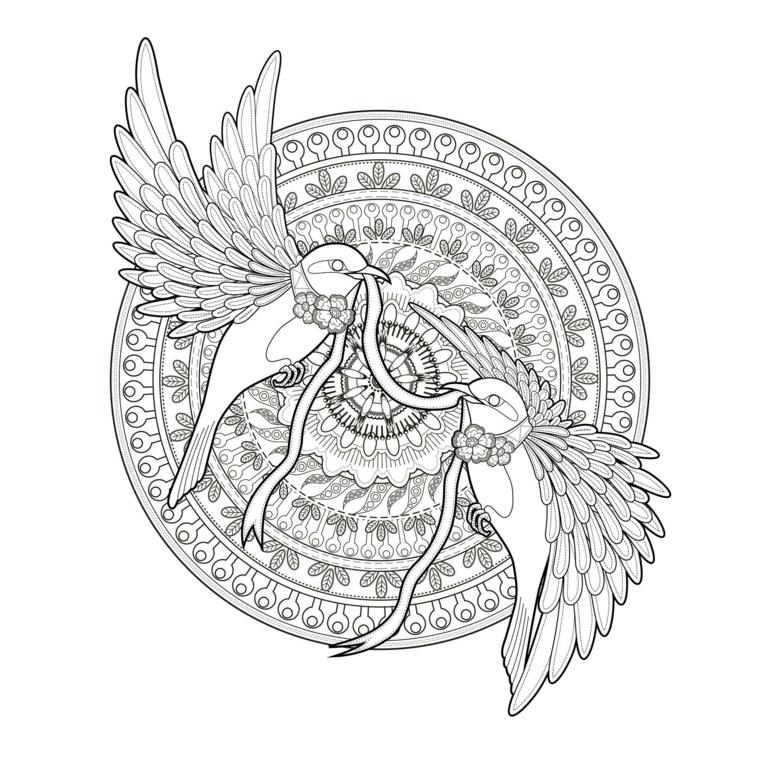 Mandala con cerchi, disegni di due uccelli, cerchio con ornamenti