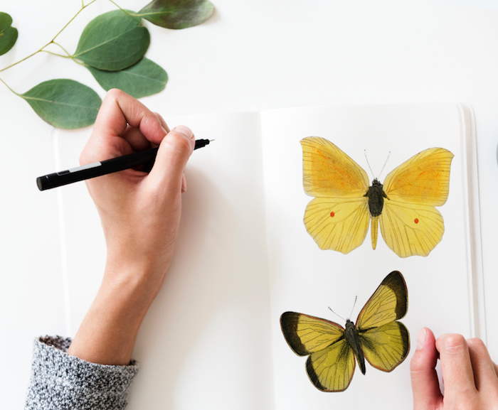 Donna che disegna, disegno di farfalle, foglie di colore verde