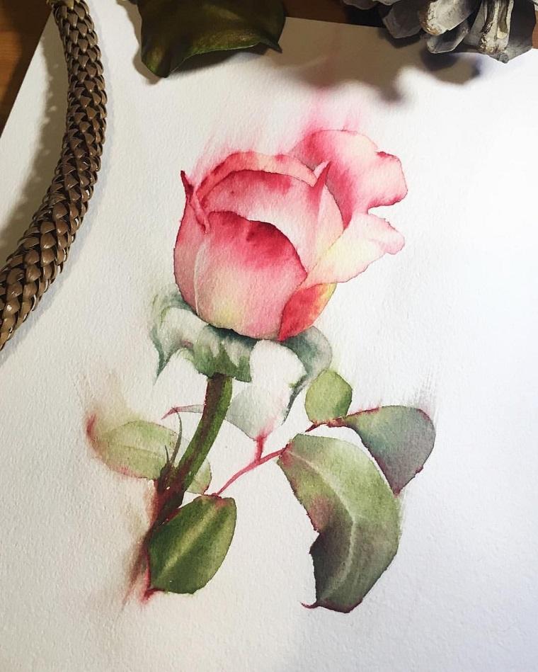Disegno watercolor, disegno di una rosa, foglie fiore verdi
