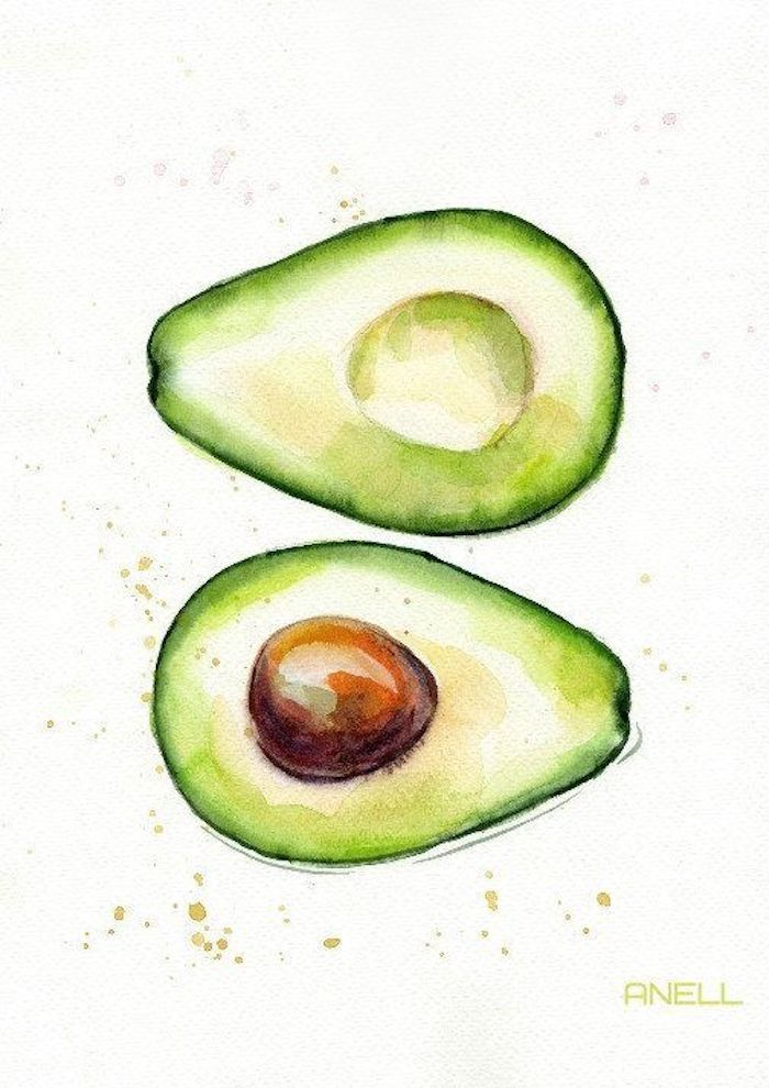 Schizzo di un avocado, pittura con acquarelli, disegni belli ma facili, avocado con noce
