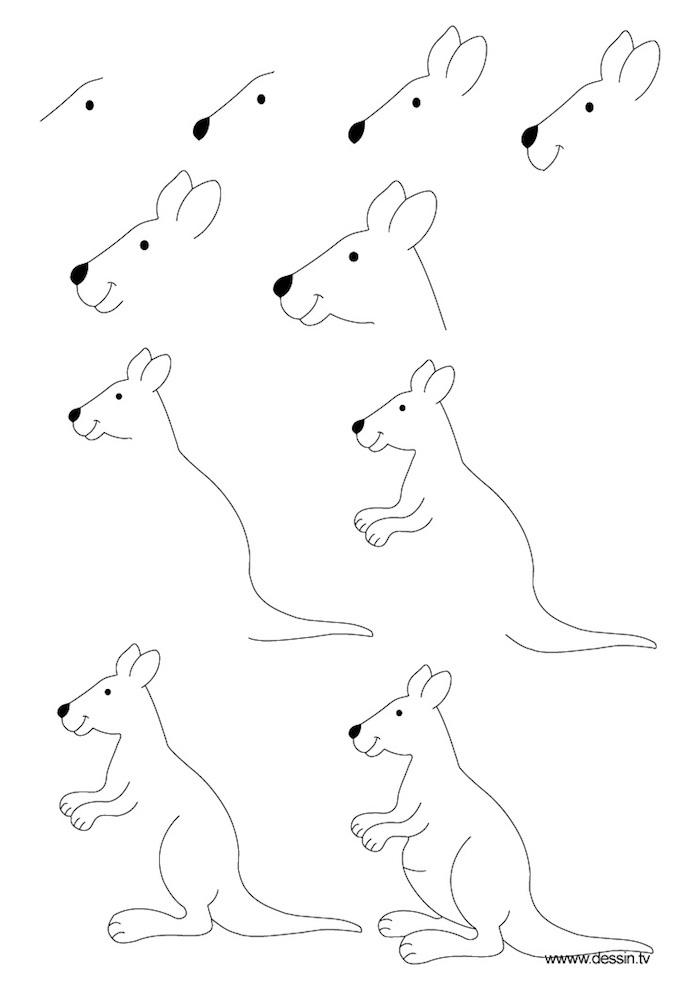 Come disegnare un canguro, tutorial disegno a matita, immagini da disegnare