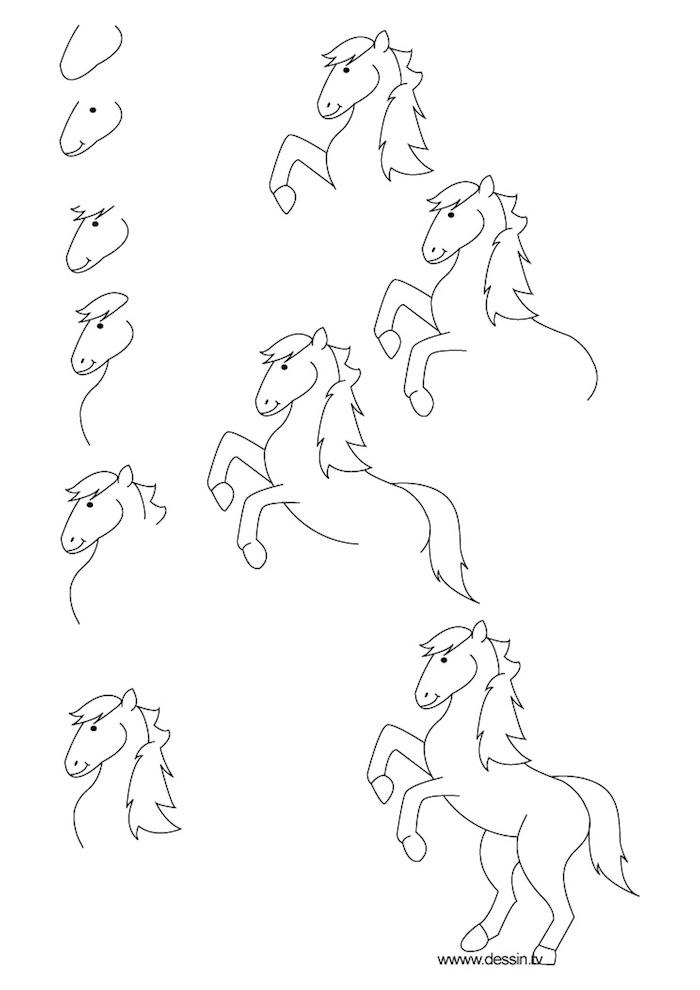 Immagini da disegnare, disegno di un cavallo, come disegnare un cavallo
