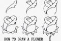 Immagini da disegnare per principianti e avanzati