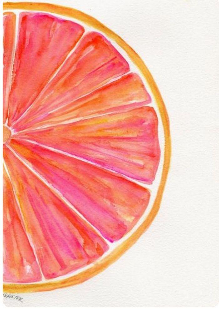 Uno spicchio di pompelmo, disegno con colori acquarello, schizzo di frutta