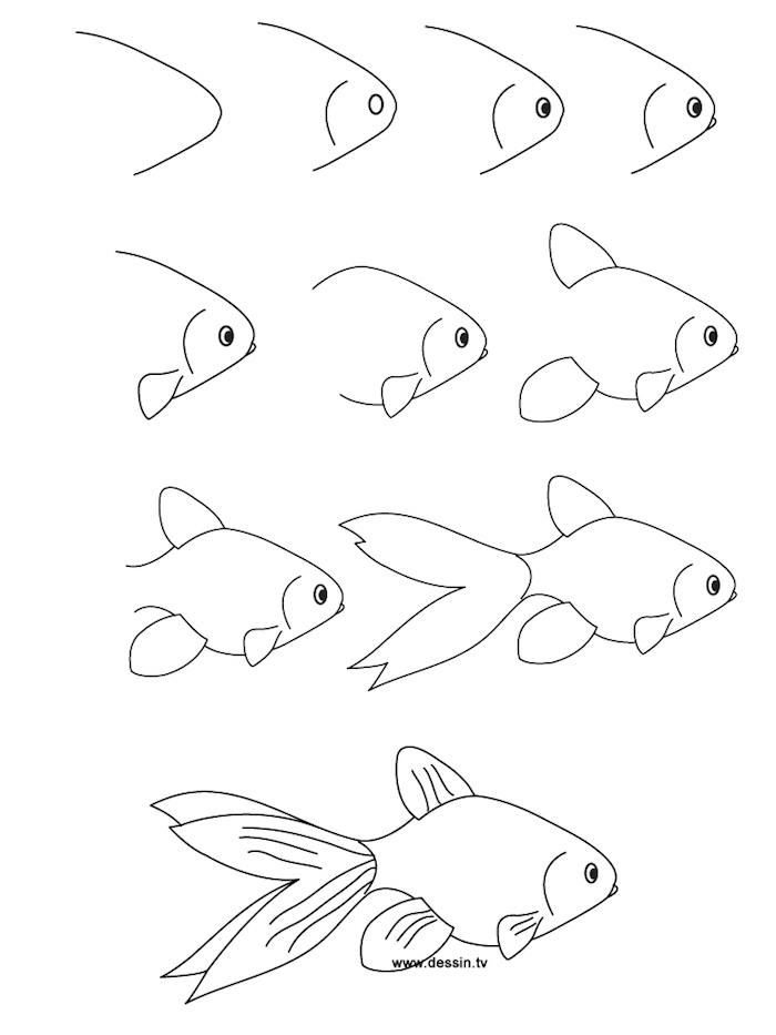 Come disegnare un pesce, schizzo a matita, tutorial disegno pesciolino