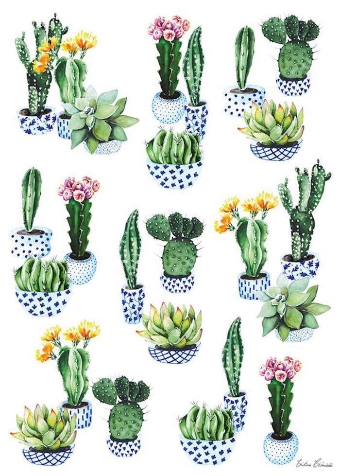 Disegni facili e belli, disegni di piante grasse, pittura con colori acrilici