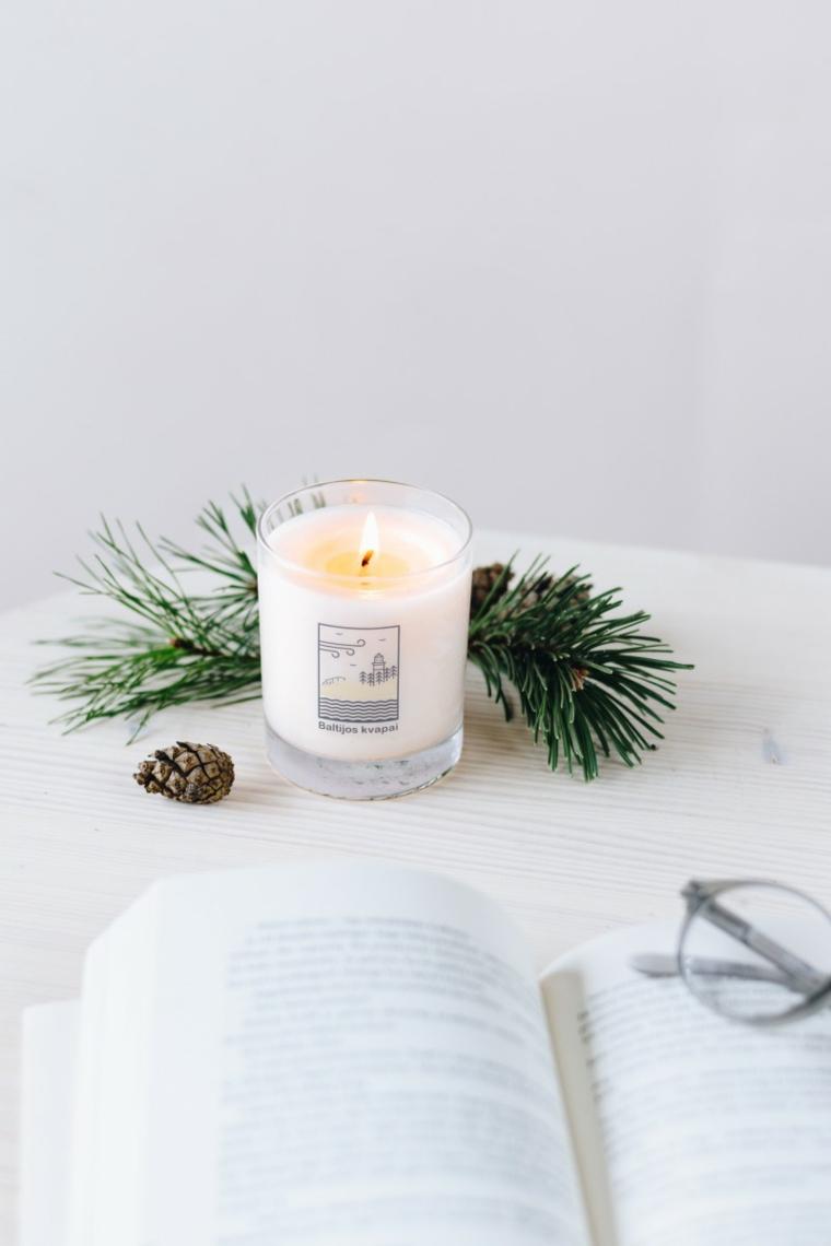 Rametto di colore verde, candela e pigna, libro e occhiali da vista, decorazioni di Natale