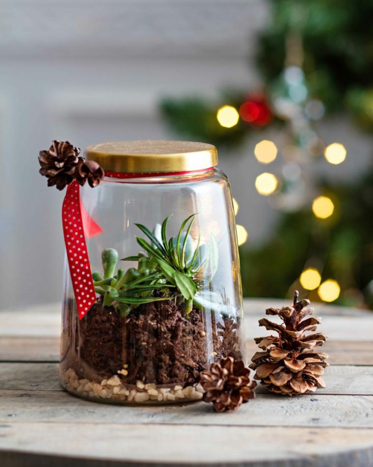 Barattolo di vetro con piante grasse, pigne piccole, idee regalo per fidanzata