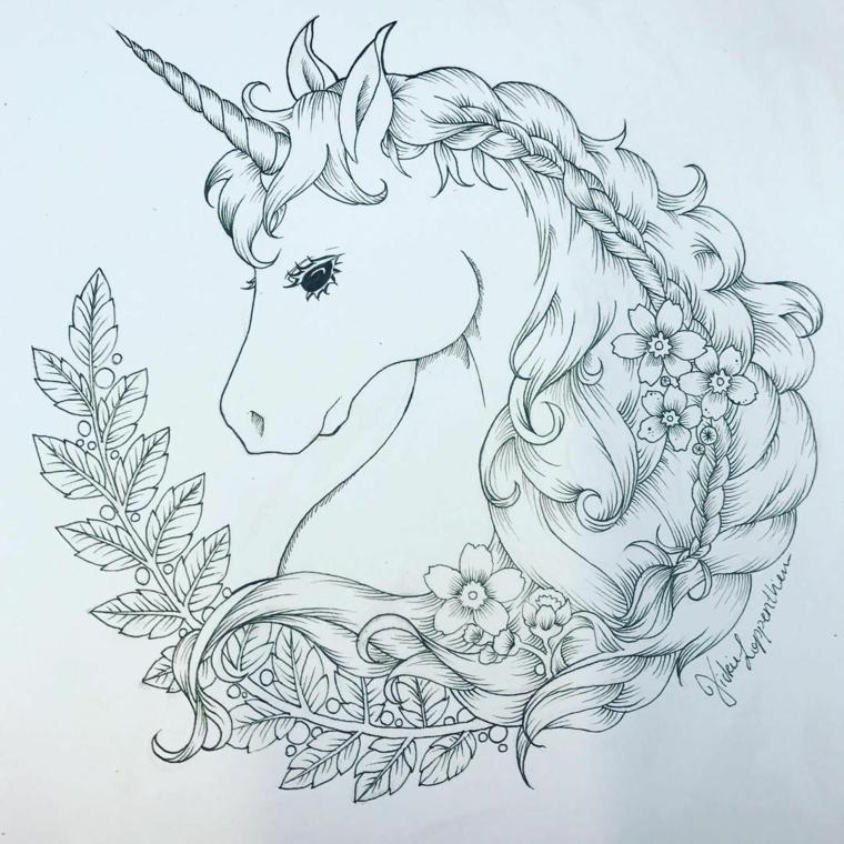 Immagini unicorni, disegno a matita di un unicorno, schizzo a matita di un unicorno