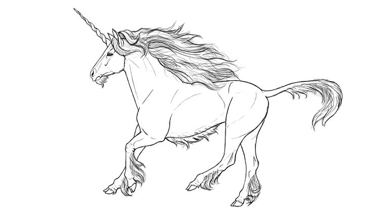 Disegno a matita di un unicorno, unicorno disegno, schizzo a matita da colorare