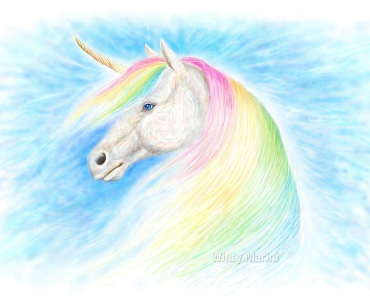 Unicorni da disegnare, schizzo unicorno realizzato con le matite colorate, criniera unicorno arcobaleno