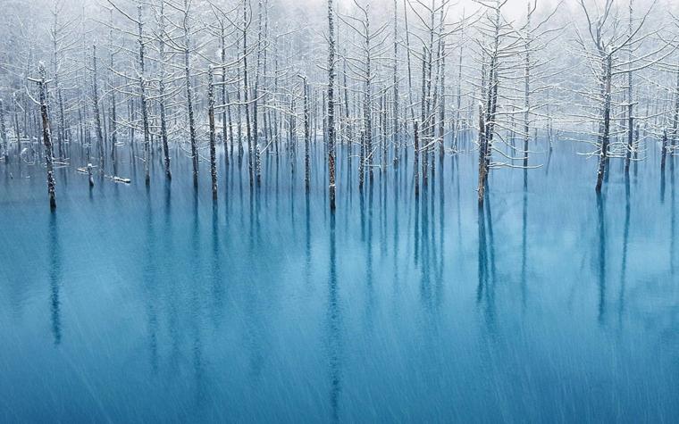 Foto di un lago ghiacciato, foto di alberi innevati, immagine per lo sfondo del computer