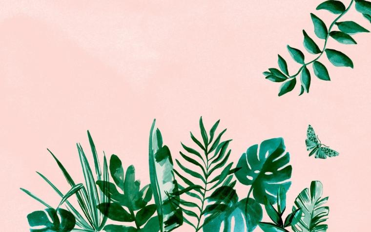 Sfondi particolari, immagine con sfondo di colore rosa, immagine con piante tropicali