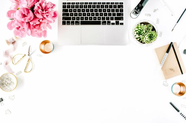 Foto di un computer portatile, immagine per lo sfondo del computer, vaso di fiori con petali rosa
