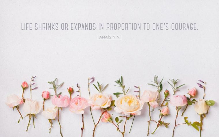 Immagini paesaggi primaverili, fiori con petali rosa, immagine con scritta in inglese