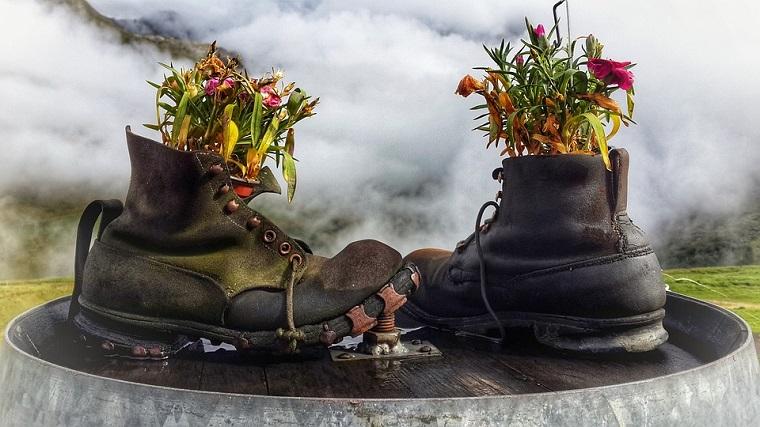 Due scarpe con terriccio e piante, riciclare le scarpe, lavoretti fai da te