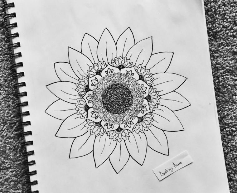 Fiori disegni da colorare, disegno su quaderno di un girasole con matita