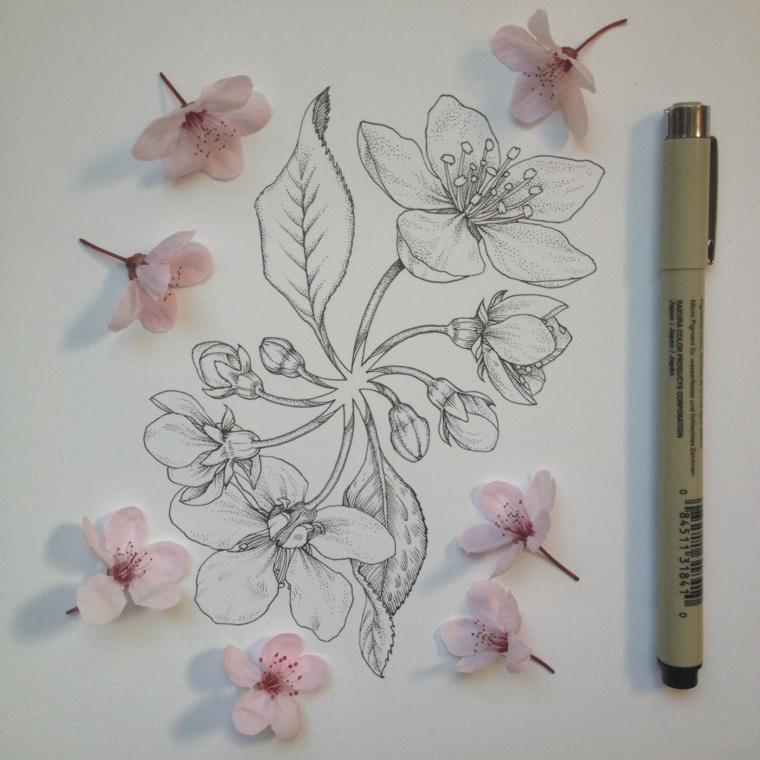 Fiori facili da colorare, disegno di fiori di ciliegio con penna nera a sfera