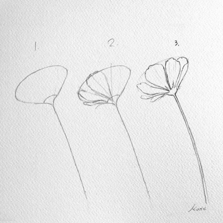 Disegni difficili da disegnare, tutorial disegno a matita di un fiore con petali