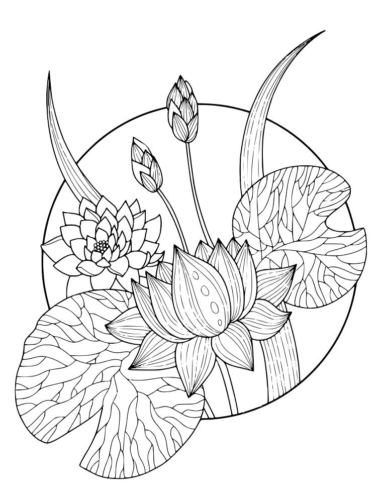 Disegno da stampare di un fiore di loto, disegno di fiori in un cerchio