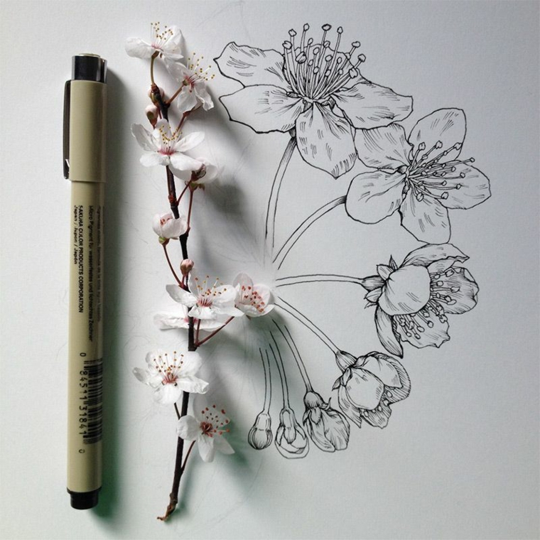 Disegni da colorare fiori, disegno con penna nera di un rametto di fiore di ciliegio