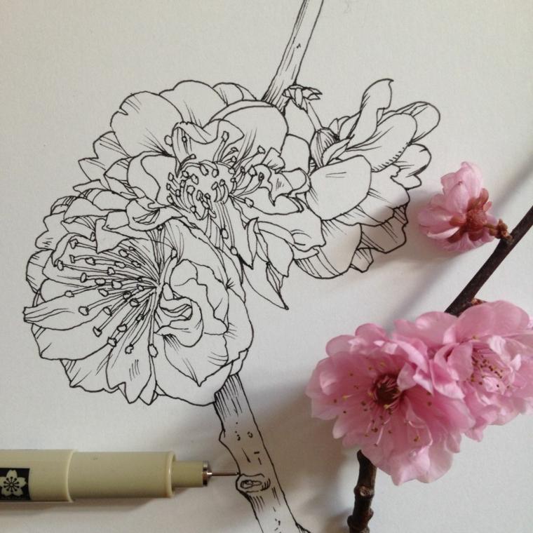 Disegno penna nera con fiore di ciliegio, fiori da colorare, disegno fiore con rametto