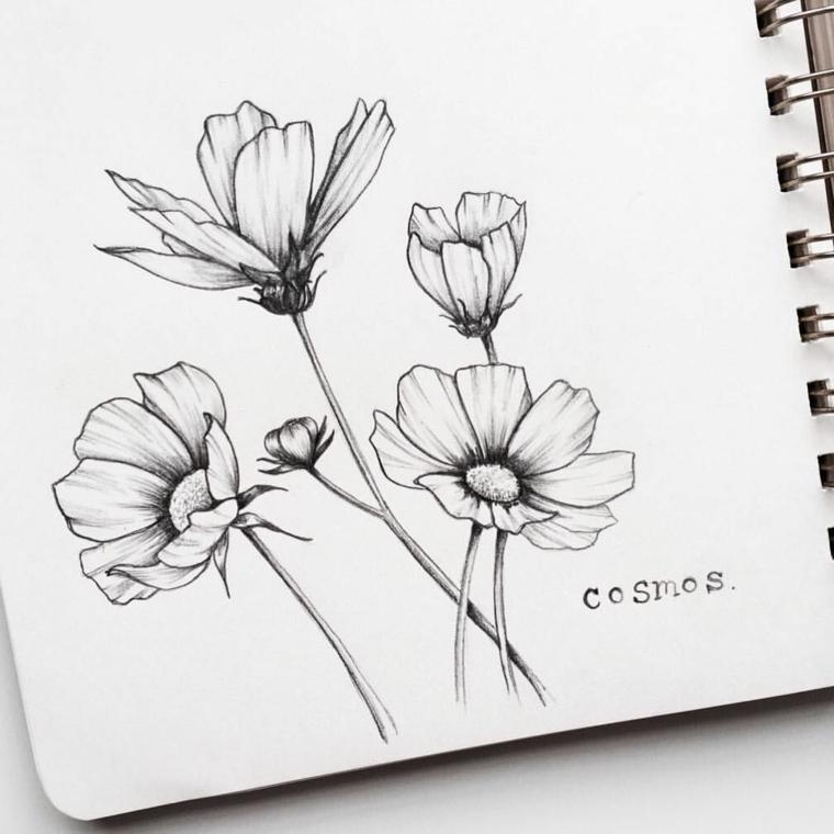 Fiore disegno da colorare, disegno a matita di un fiore con petali sfumati