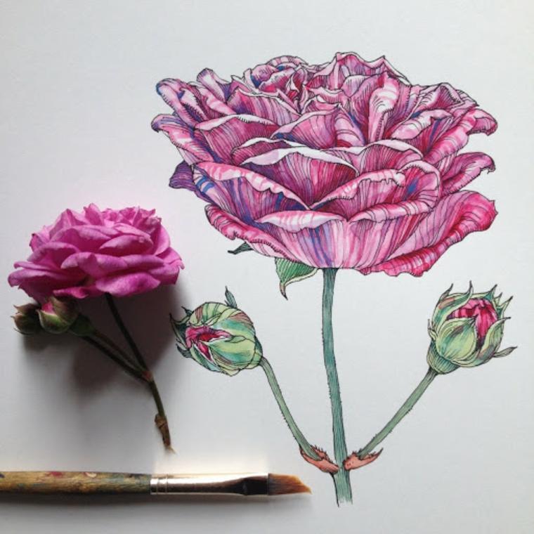 Fiori da colorare per adulti, disegno colorato di una rosa con petali rosa