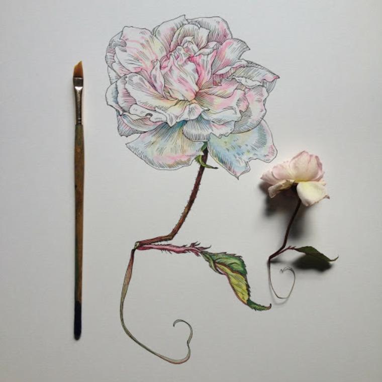 Fiore disegno da colorare, disegno con pennello di un fiore con petali bianchi