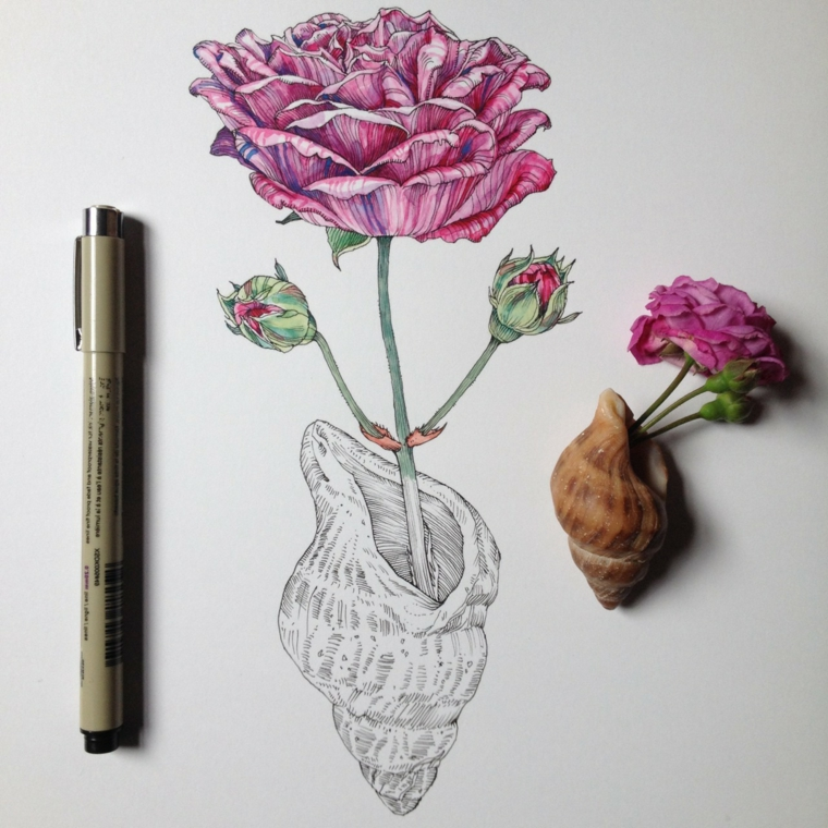 Un fiore che esce da una conchiglia, disegno colorato di un fiore, disegni di fiori da colorare